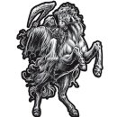 Aufkleber Sensemann Pferd Reiter Horseman Sticker Reaper...