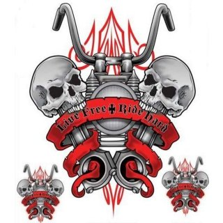Lebe Frei Fahr Hart Aufkleber Live Free Ride Hard Decal Airbrush Skull Helm Tank