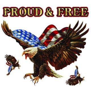 Aufkleber Set Stolzer Adler USA Freiheit 16 x12 cm Sticker Proud N Free Eagle