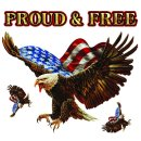 Aufkleber Set Stolzer Adler USA Freiheit 16 x12 cm...