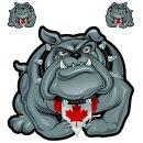Aufkleber Set Bulldogge Kanada Canada Bulldog Sticker...