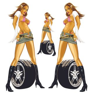 Aufkleber Set Sexy Pin Up Girl Pimp my Ride Felge Jeansrock Tattoo Blond Bikini