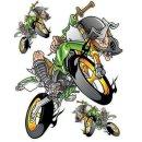 Aufkleber Set Irrer auf Enduro Grün 17x14cm Green...